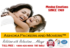 Make Your Relocation Hassle in Hyderabad